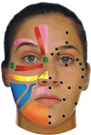 Click me to learn more about how Facial Reflexology can benefit you.